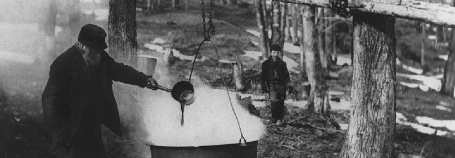 Old photo of a man boiling maple sap into syrup